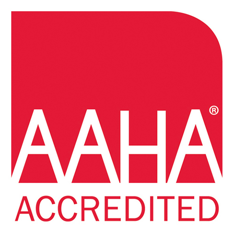 aaha accredation